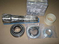 Ремкомплект шкворня RENAULT Magnum,Premium на сторону (RIDER), AEHZX