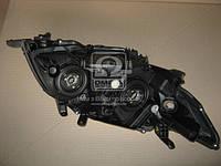 Фара левая (производство Toyota) (арт. 8117012A60), AHHZX