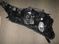 Фара левая (производство Toyota) (арт. 8117042542), AHHZX