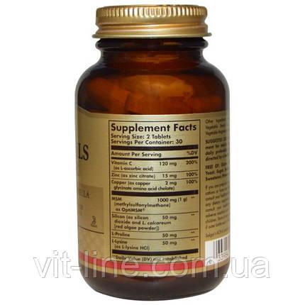 Solgar, кожа, ногти и волосы, улучшенная формула с метилсульфонилметаном, 60 таблеток, фото 2