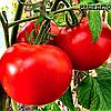 Семена томата Ляна 50 сем. Элитный ряд