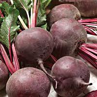Семена свеклы Эфиоп 3 гр. Nasko