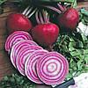 Семена борщевой свеклы Тонда ди Кьожжа 500 гр. Коуел (Сайс)
