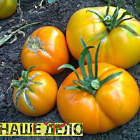 Семена томата Апельсин 30 сем. Элитный ряд