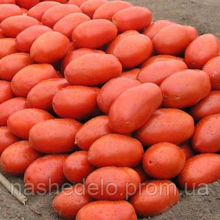 Семена томата Инкас F1 20 сем. Садыба Центр