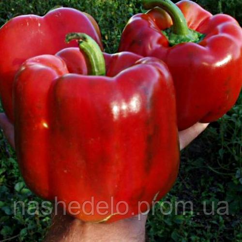 Семена перца сладкого Геркулес F1 8 сем. Садыба Центр