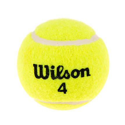 Мяч для большого тенниса Wilson W-60/1, фото 2