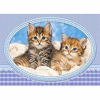 Пазлы Котята на одеяле, 120 элементов Castorland  В-13111