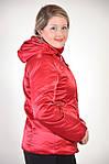 Куртка женская красная ( П0 009-1), фото 3
