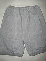 Панталоны женские теплые на байке, 100% хлопок. От 6шт по 35грн