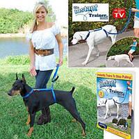 Поводок для собак instant trainer