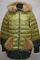 Женская зимняя куртка на замке с капюшоном зеленая