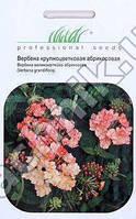 Вербена крупноцветковая абрикосовая 0,1 г