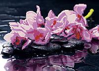 Схема для вышивки бисером Орхидеи