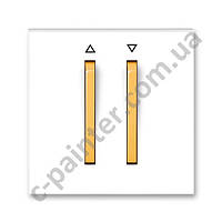 Центральная панель выключателя двойная для жалюзи ABB Neo Белый /Оранжевый Лед  3559M-A00662 43