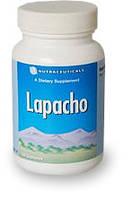 Лапачо / Lapacho / Пау де Арко - Иммуномодулятор