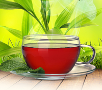 Монастырский чай для печени (печеночный сбор)
