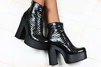 Ботинки демисезонные, кожаные лаковые питоны на толстом каблуке