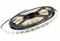 Лента LEDSTAR - SMD 2835 4.8W 12V 60 LED/метр IP65 3000K