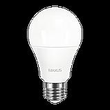 Светодиодная Лампа A60 10W E27 MAXUS 950lm,3000k, фото 2