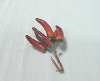 Декоративный Перец, бордовый, 6см