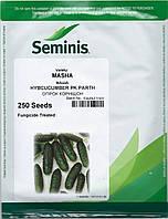 Огурец Маша F1, 250 семян, Seminis