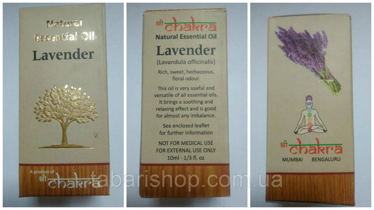 Эфирное масло Лаванда, Essential Oil Lavender, 10мл