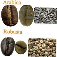 Немного о зернах кофе