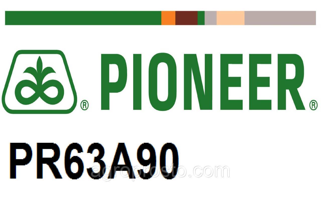 Гибрид подсолнечника Пионер ПР63А90 (Pioneer PR63А90)