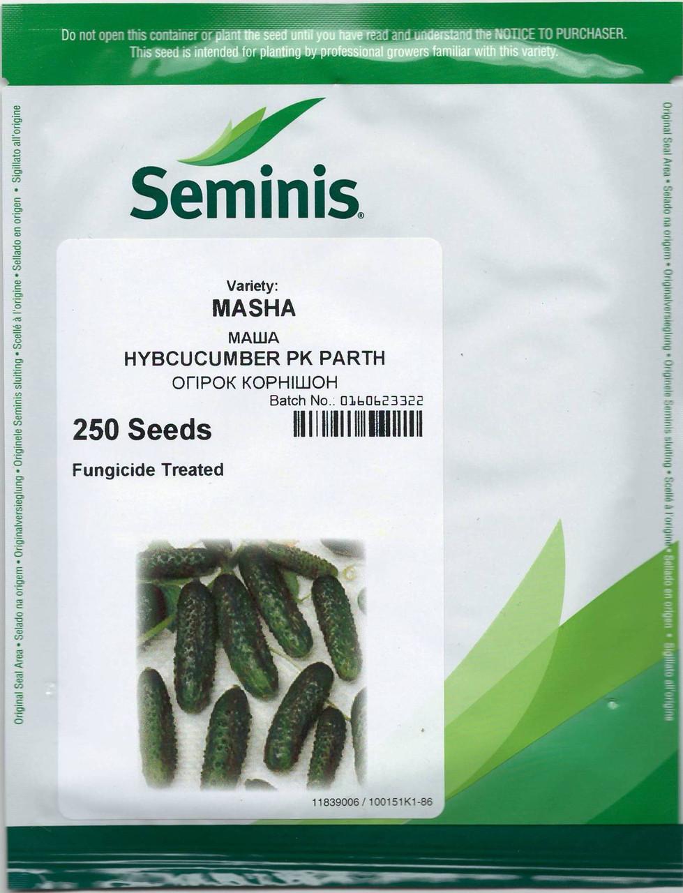 Огурец Маша F1, 1000 семян, Seminis