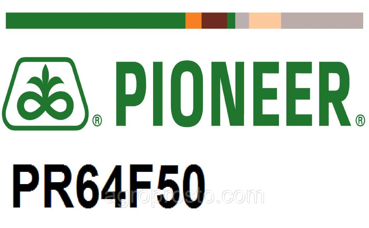 Гибрид подсолнечника Пионер ПР64Ф50 (Pioneer PR64F50)