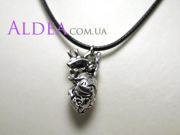 Кулон Сердце анатомическое, цвет серебро