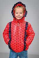 Детские курточки для девочек, фото 1