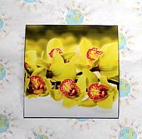 Наклейка на выключатель или розетку Весна