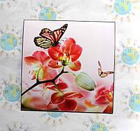 Наклейка на выключатель и розетку Орхидеи и бабочки