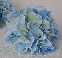 Головка гортензії велика блакитна