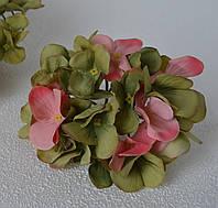 Головка гортензии салатово-розовая, фото 1