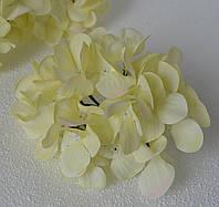 Головка гортензії натурального білого кольору