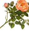 Цветы (одинарные)