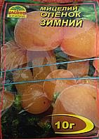 Мицелий гриба Опенок зимний 10г.