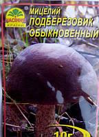 Мицелий гриба Подберезовик обыкновенный 10г.