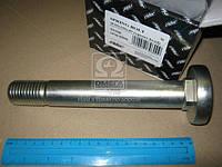 Болт М30x200x40 4-х гран. Рессоры (RIDER)