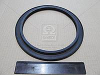Кольцо уплотнительное наружная сальника поворотов кулака ГАЗ 66 (Производство Украина) (с пружиной) 66-2304055