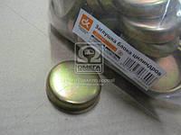 Заглушка блока цилиндров ВАЗ 2101  14329901