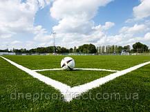 Искусственная трава для футбола Limonta TangoTurf FI 60 (FIFA certified), фото 3