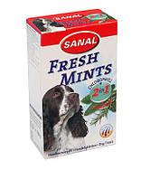 Витамины для собак Sanal Dog Fresh Mints «свежее дыхание»