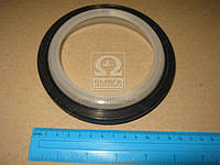 Сальник коленвала REAR R.V.I. MIDR 04.02.26/04.02.26/DXI 4D/C/DXI 6A/W (110X13 (Производство Payen) NF837
