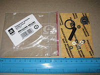Ремкомплект форсунки Д-245С МТЗ 920 полный  172.1112010-11-1
