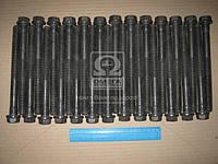Болты ГБЦ к/т DAF XF, CF MX 265/300/340/375, MX-13 265/303/340/375 (производство Elring) (арт. 259.560), AHHZX