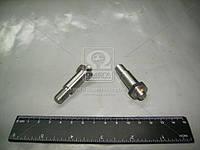 Болт башмака натяжителя цепи (Производство АвтоВАЗ) 21010-100609800